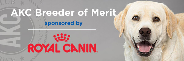 Royal Canin Sponsorship Logo