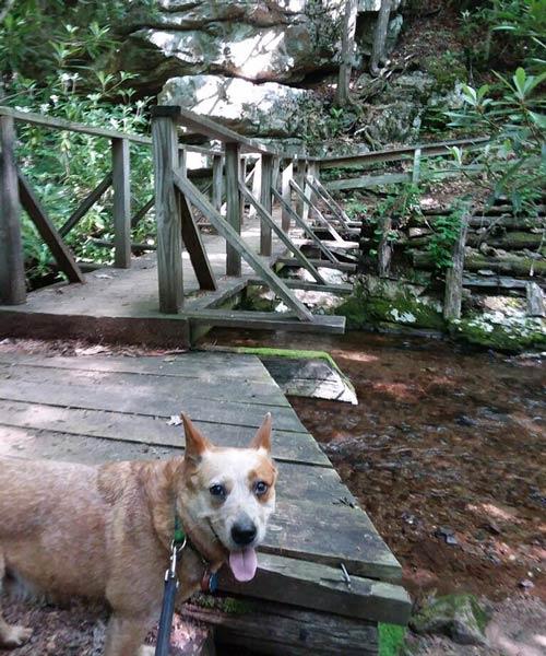 Appalachian-Trail-Feature-story-_7_