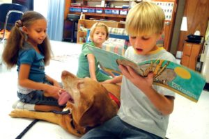 Public Education Educator Resources Canine Reading Buddies