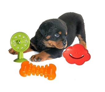 PuppyPlayPack