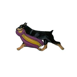 doberman-pin
