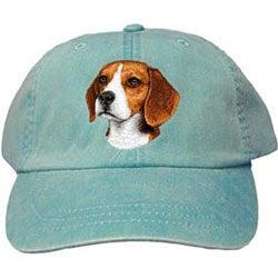 hat-beagle