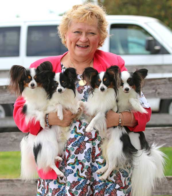 papillon-breeder-of-the-year